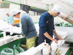 おしぼりの包装作業